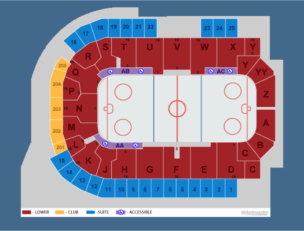 hockey seating